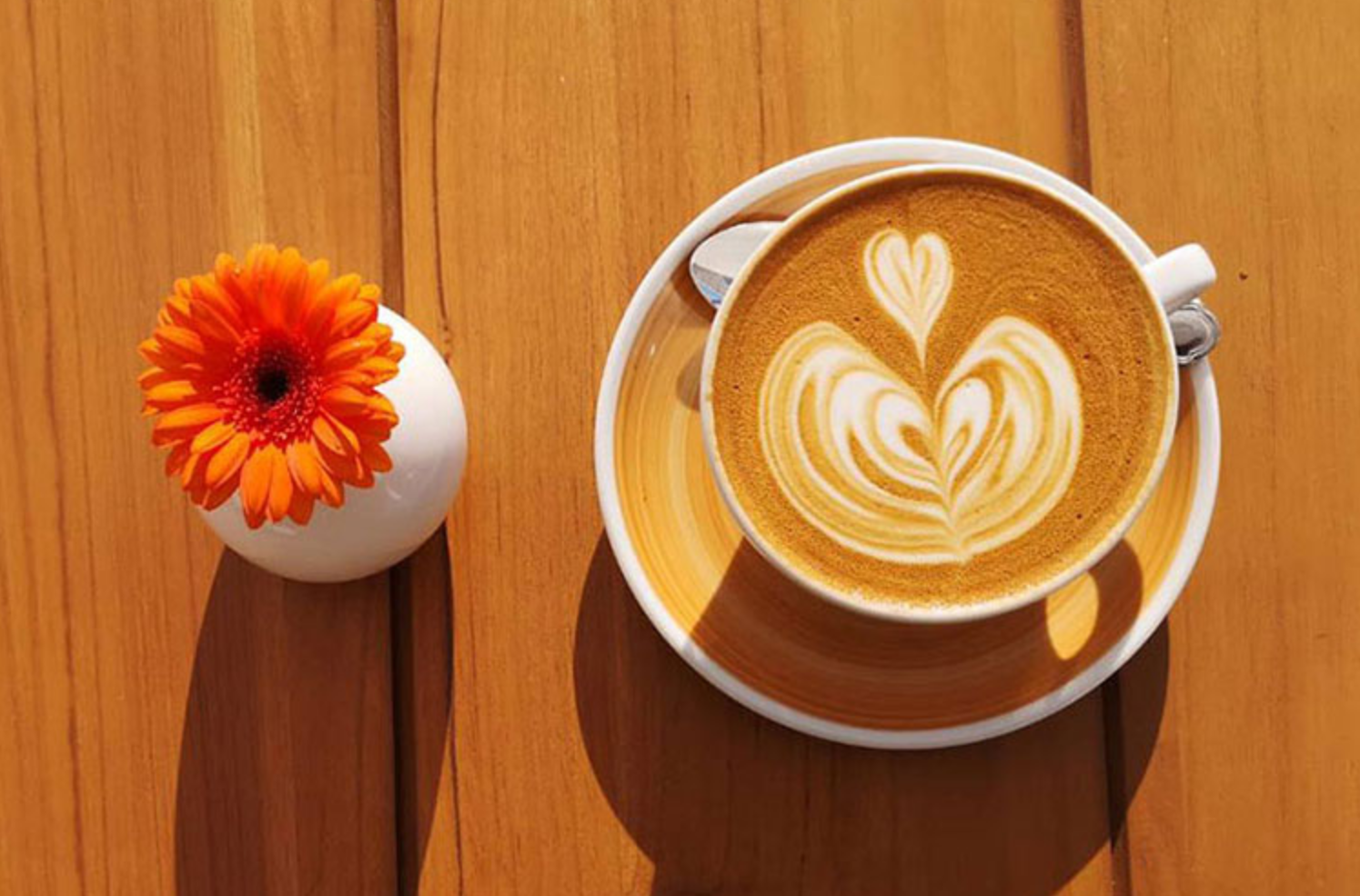How to choose the best coffee for yourself