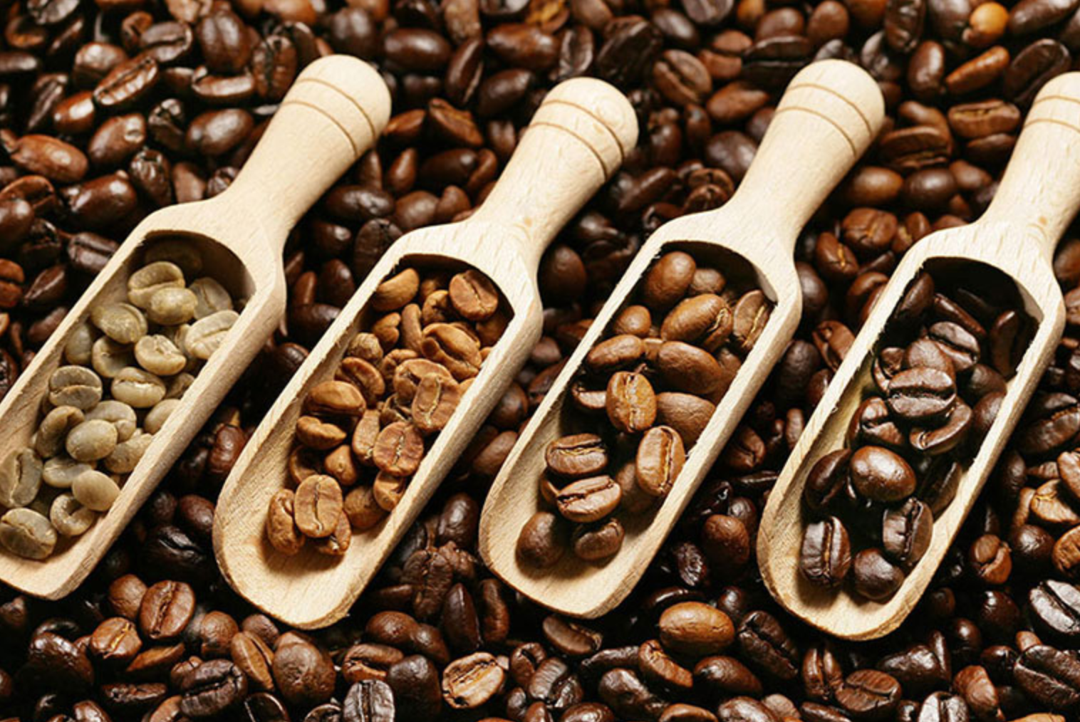 roasting affects the taste of coffee
